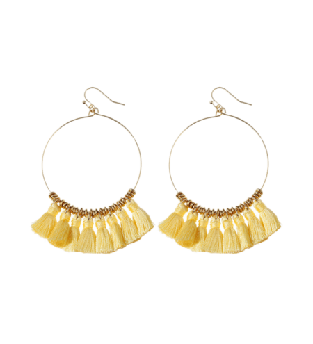 Tassel Cicle Hoop Drop Earrings