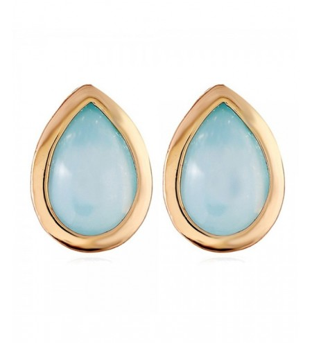 Water Drop Design Alloy Earrings
